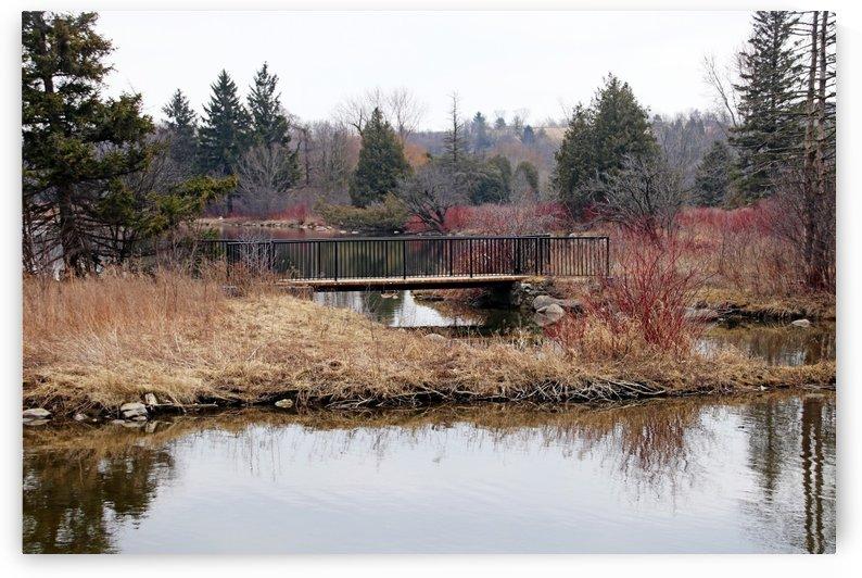 Bridge At York Lands Park by Deb Oppermann