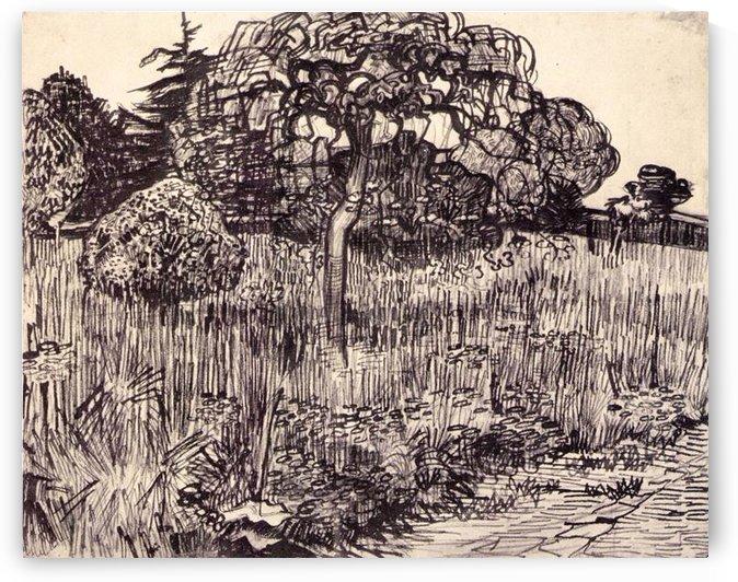 Tree in a meadow by Van Gogh by Van Gogh