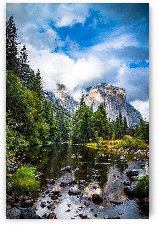 Yosemite by Shutter Bliss Photography
