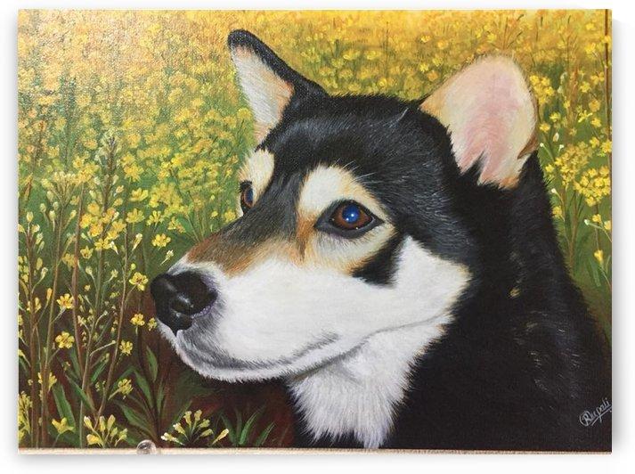 dog portrait by Rupali Lakhote