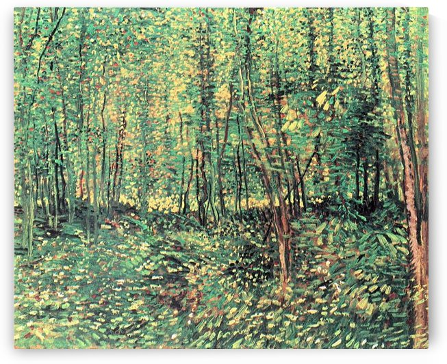 Trees and undergrowth by Van Gogh by Van Gogh