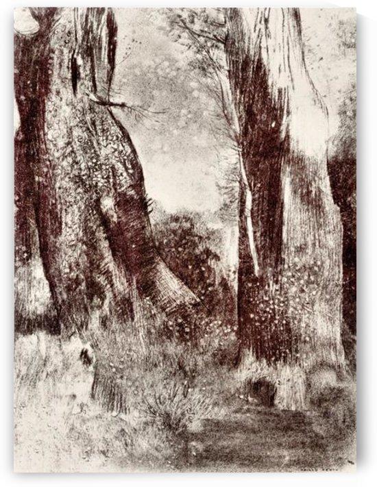 Trunks in the forest by Odilon Redon by Odilon Redon