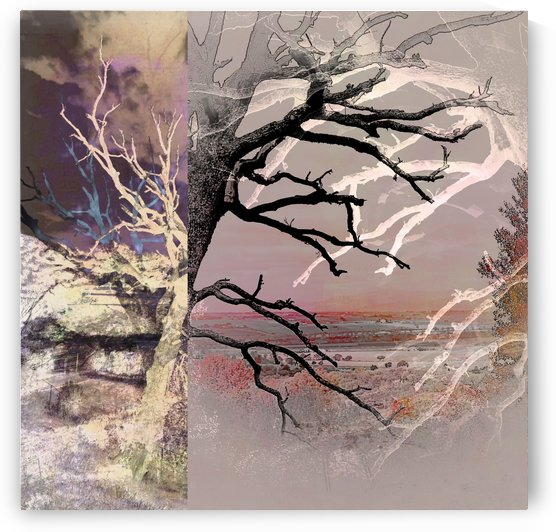 Tree Layers 8 by Dorothy Berry-Lound