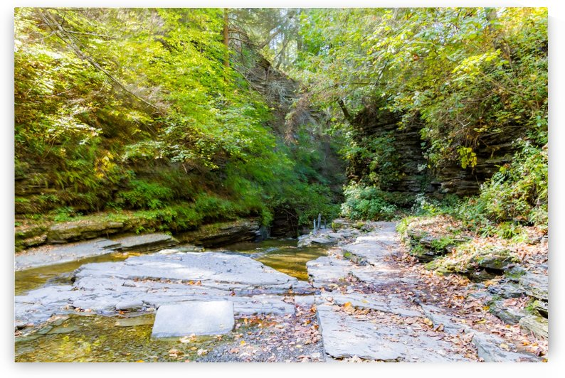 Eagle Cliff Falls 13 by William Norton Photography