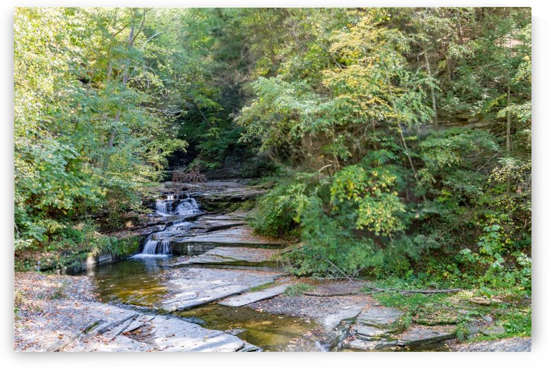 Eagle Cliff Falls 2 by William Norton Photography
