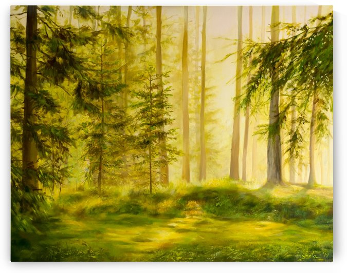 Forest Sunset by Ineta Petersone