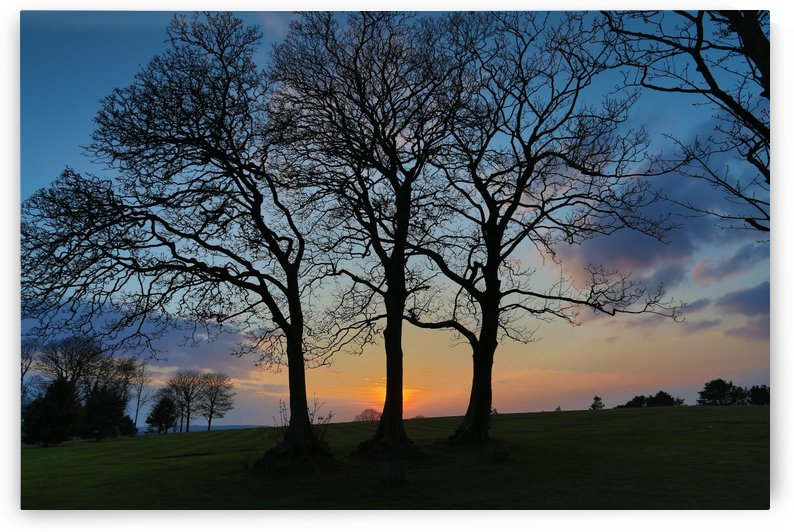 Ravenhill park sunset by Leighton Collins
