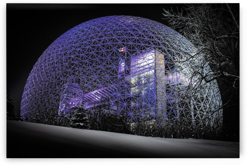Frozen biosphere by Actarus Studio