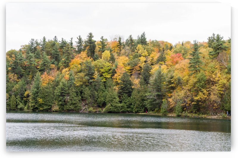 Autumn on Pink Lake 19 by Bob Corson