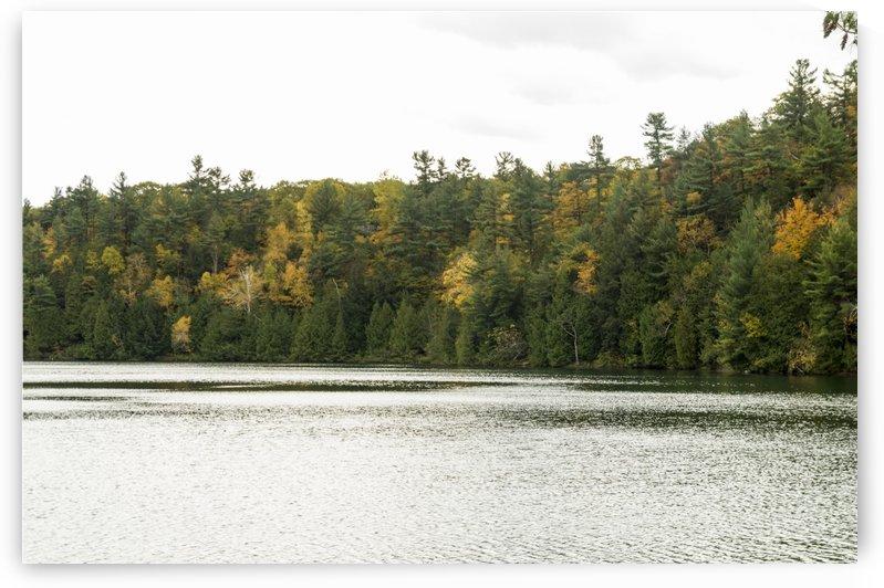 Autumn on Pink Lake by Bob Corson