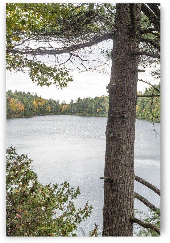 Autumn on Pink Lake 20 by Bob Corson
