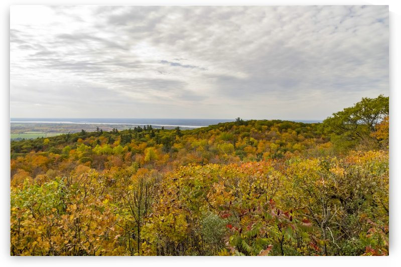 View of Ottawa Valley in Autumn 42 by Bob Corson