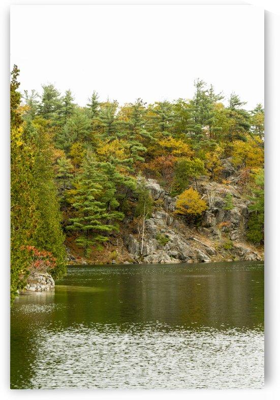 Autumn on Pink Lake 3 by Bob Corson