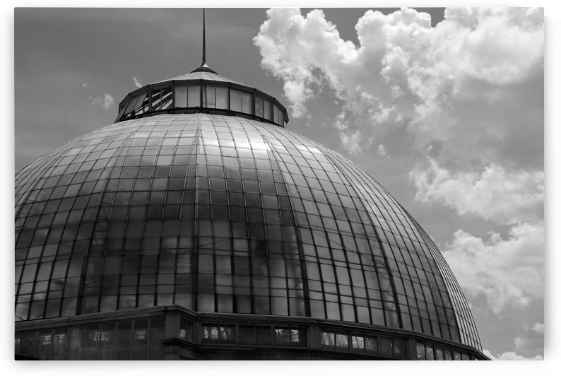 Belle Isle Conservatory Dome BW by Mary Bedy