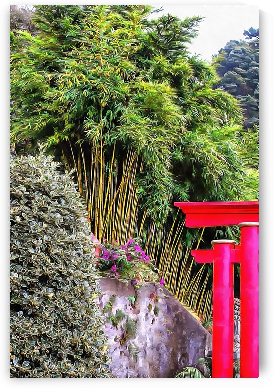 Oriental Gardens Madeira 7 by Dorothy Berry-Lound