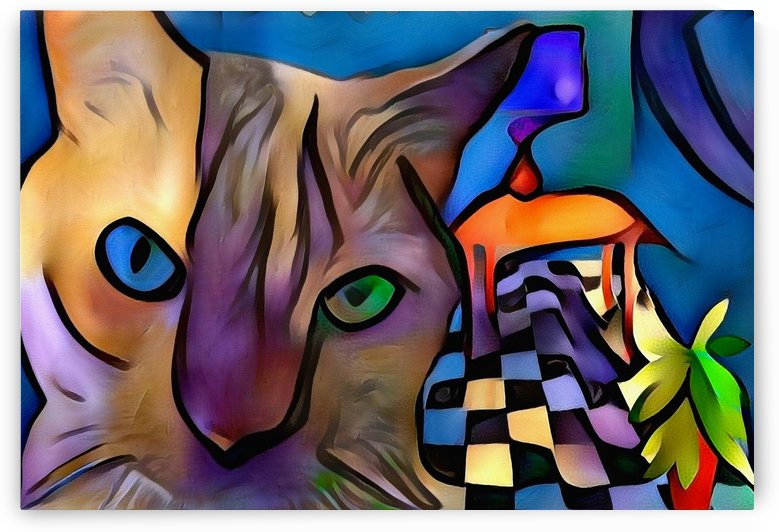 Colorful Cat by Bruce Rolff