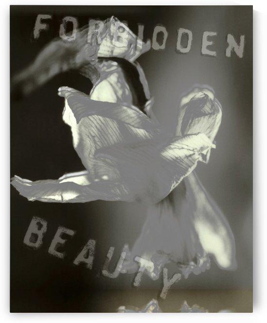Forbidden Beauty by Bruce Rolff