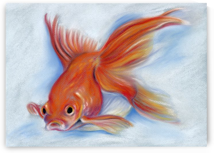 Goldfish by MM Anderson