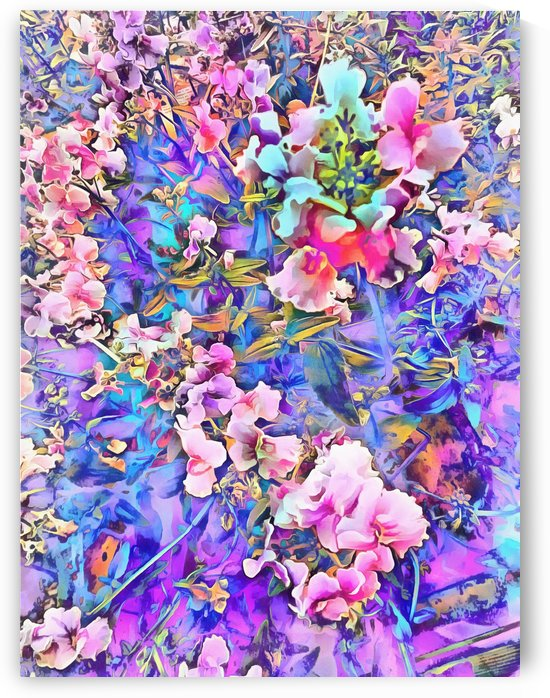 Pink and Blue Fusion by Dorothy Berry-Lound