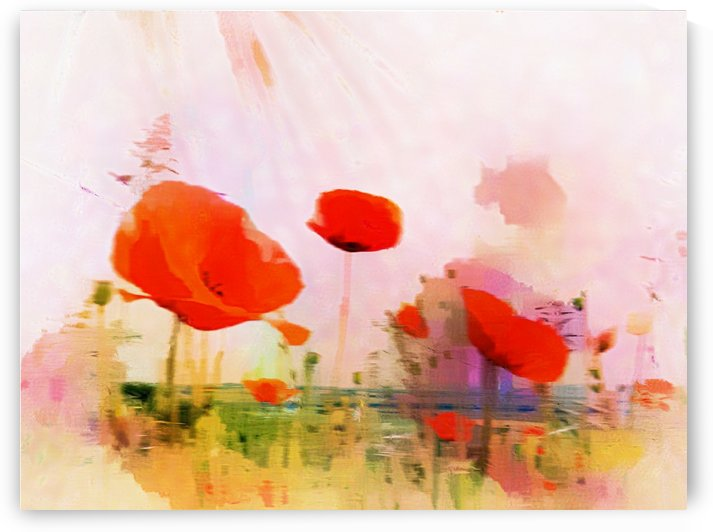 Poppies In Impression by Dorothy Berry-Lound
