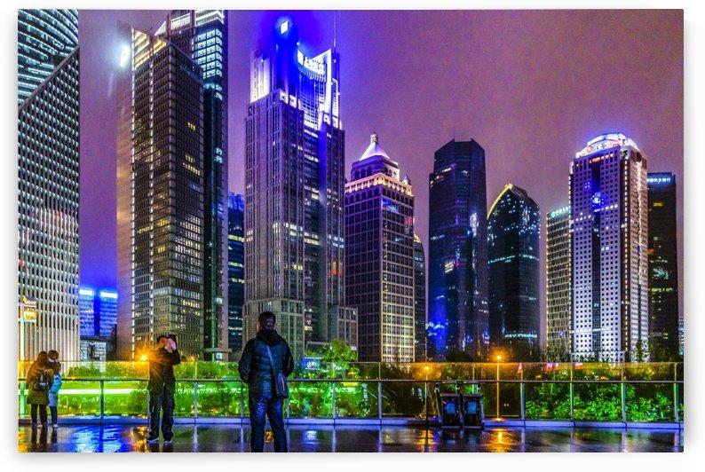 Lujiazui District Nigth Scene, Shanghai, China by Daniel Ferreia Leites Ciccarino