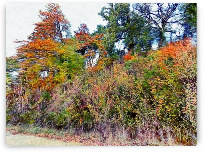 Natural Autumn Abstract by Dorothy Berry-Lound