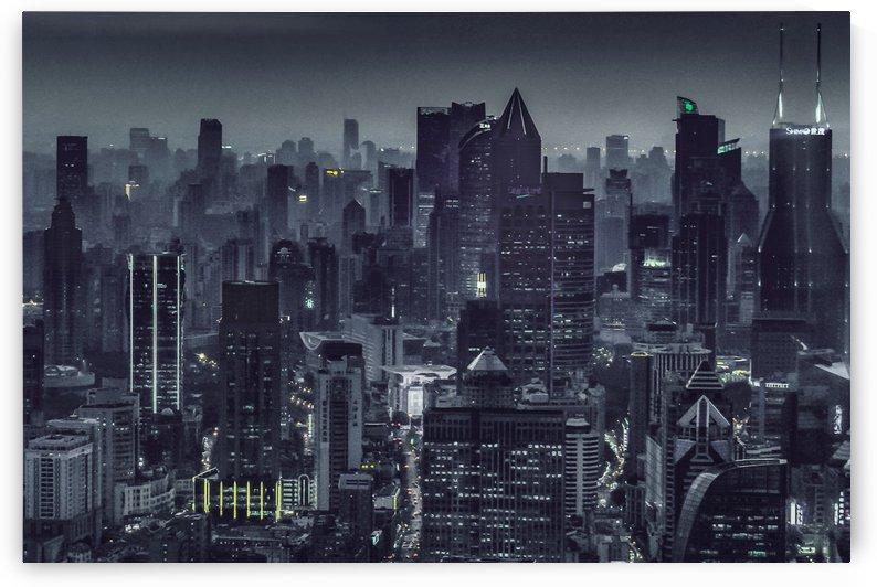 Aerial View Night Scene Shanghai, China by Daniel Ferreia Leites Ciccarino