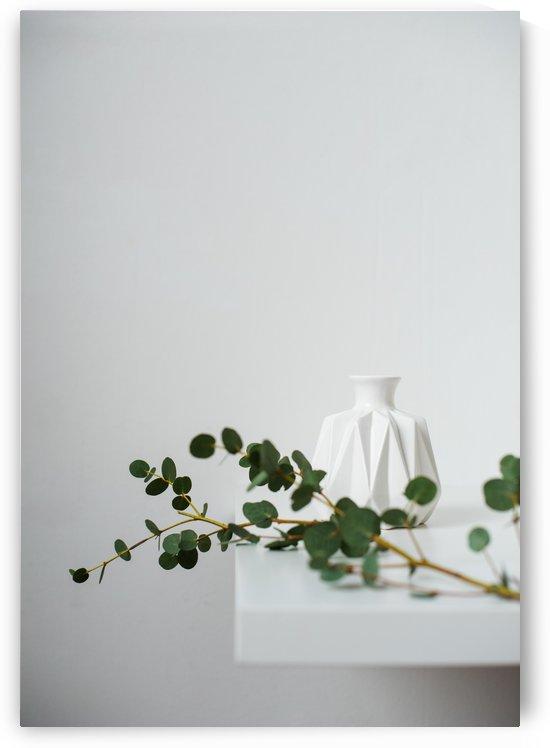 Minimal by Daria Minaeva