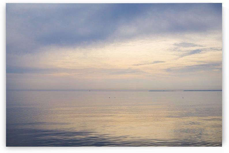 Golden sea by Daria Minaeva