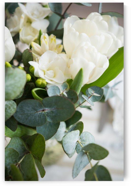 White flowers by Daria Minaeva