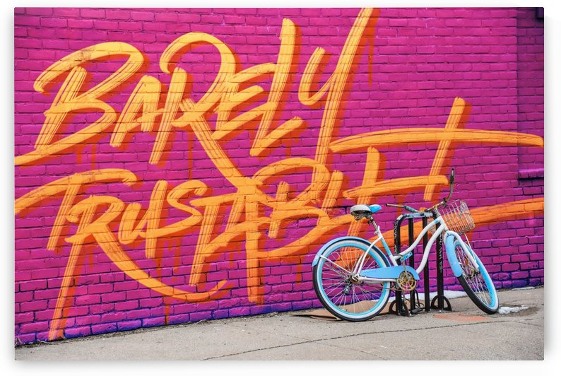 BARELY TRSUTABLE WALL by Guillaume Laserson