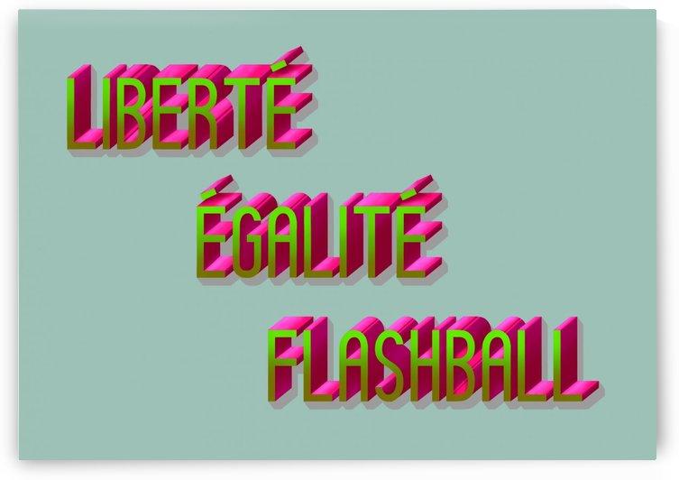 LIBERTÉ ÉGALITÉ FLASHBALL by Guillaume Laserson
