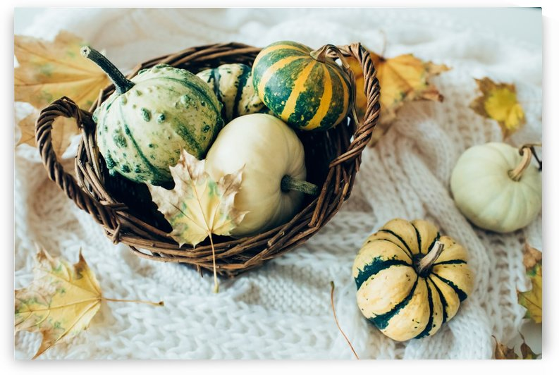 Autumn pumpkins by Daria Minaeva