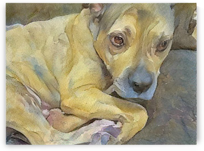 Watercolor dog painting by NganHongTruong