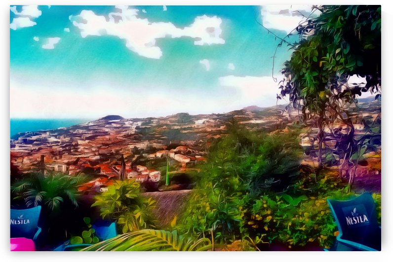 Funchal View Madeira 3 by Dorothy Berry-Lound