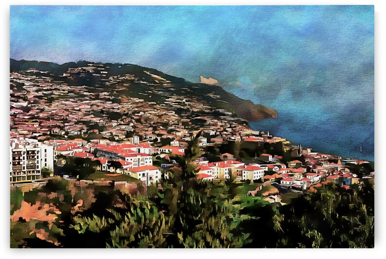 Funchal View Madeira 2 by Dorothy Berry-Lound
