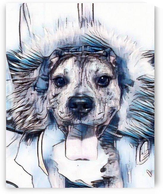 Dog Drawing (33) by NganHongTruong
