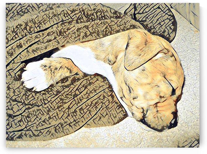 Dog Drawing (59) by NganHongTruong