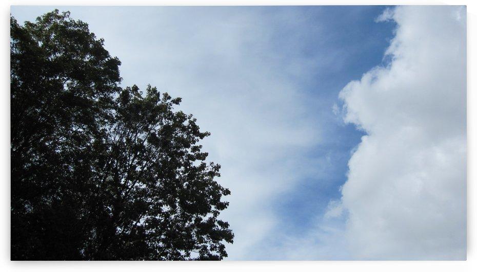 Sky (13) by NganHongTruong