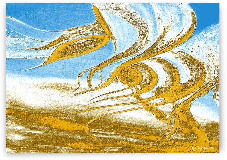 Wind Melodies by Faye Anastasopoulou