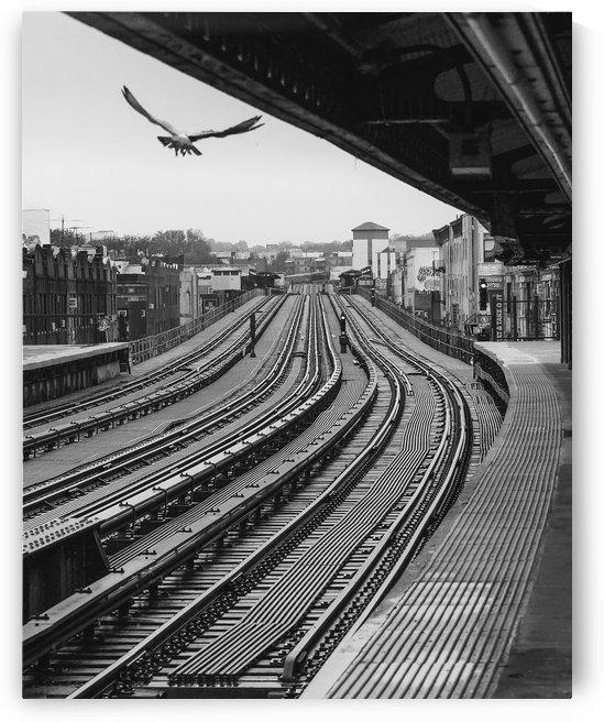 Station de métro - Brooklyn by Jean-Louis Desrosiers