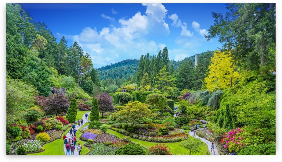 Butchart Gardens by Darryl Brooks