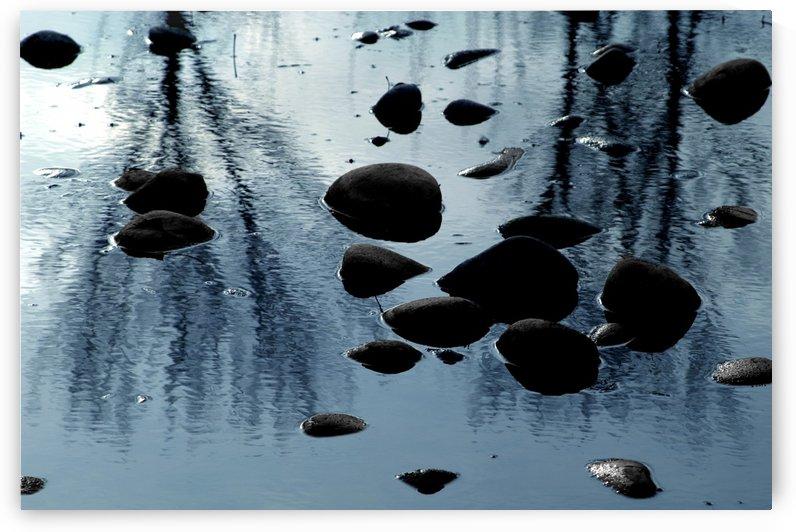 Boise River 1 by David Ryan