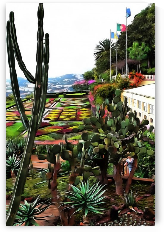 Jardim Tropical Monte Palace 4 by Dorothy Berry-Lound