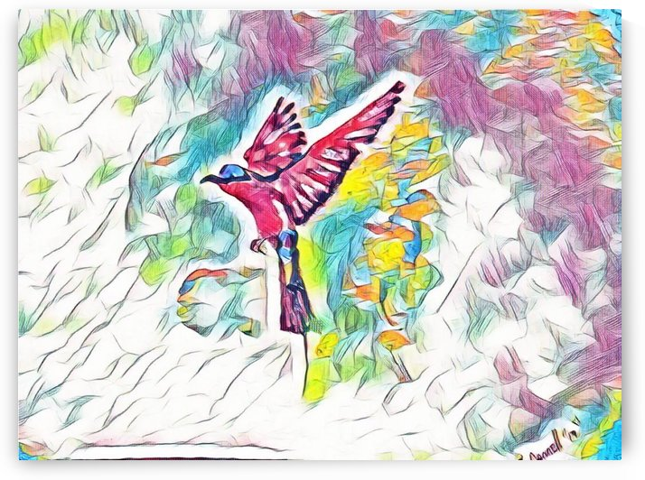 Abstract Southern Carmine Bee-eater by Ralph Cannell - Art by Cannell