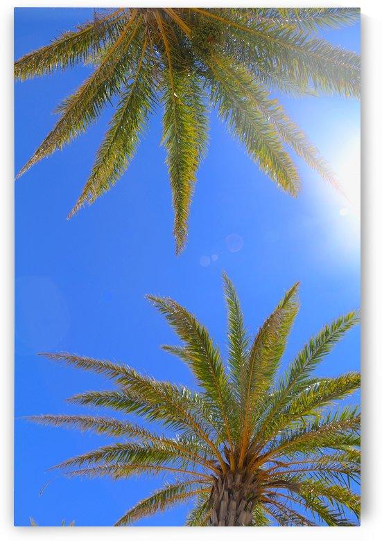 Sweaty Palms by IsabelVictoria