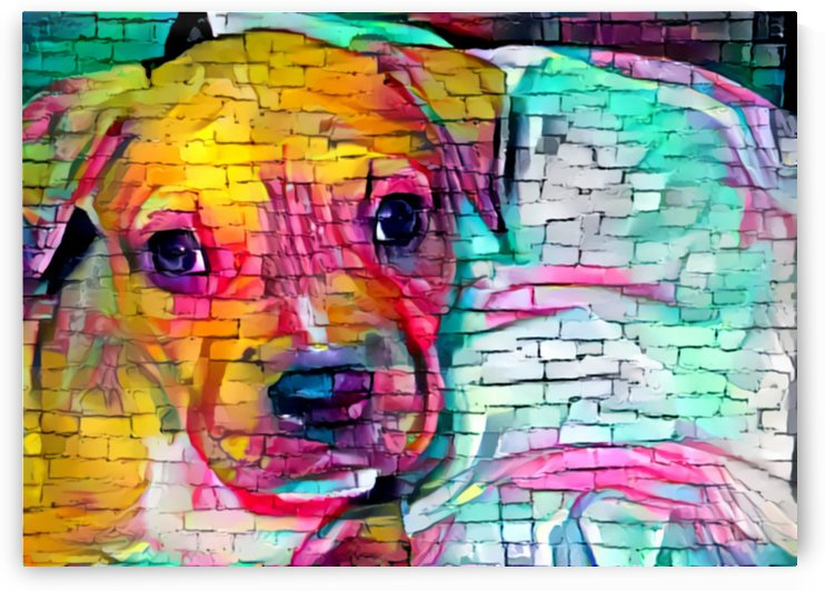 Graffiti Wall Dog Art by NganHongTruong