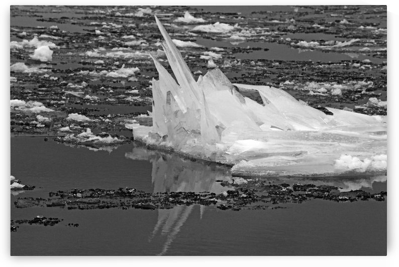 Jagged Ice on the River BW 021619 by Mary Bedy