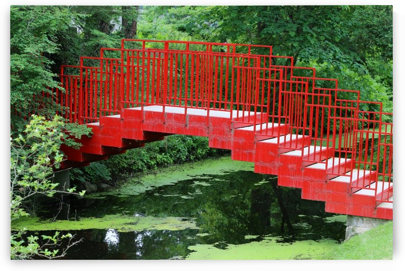 Dow Gardens Red Footbridge 062618 by Mary Bedy