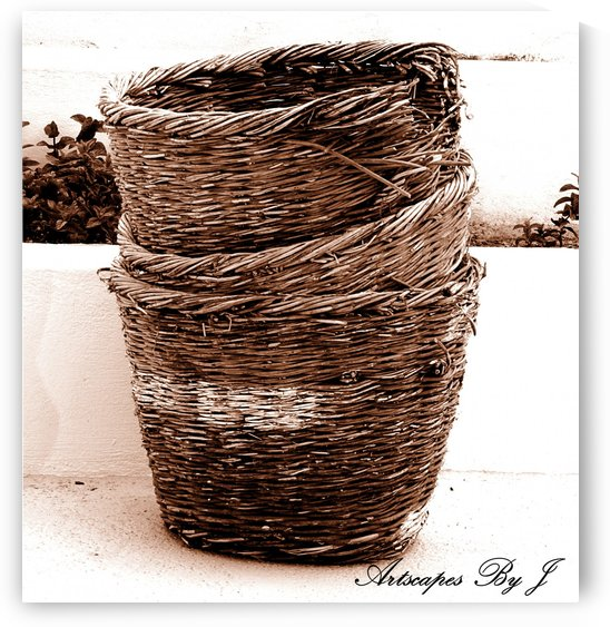 Grape Baskets by Artscapes By J
